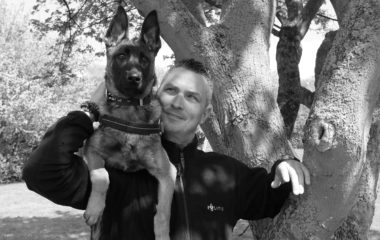 Heerlijke Hondenbanen