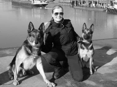 Reprise 'Heerlijke Hondenbanen'