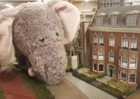Olifant Joep bezoekt minimuseum